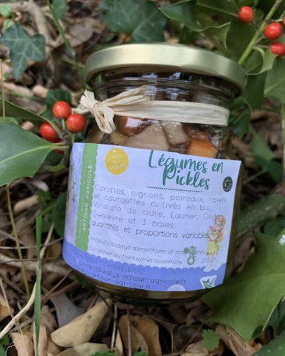 legumes-pickles-kalys-artisan-agricole